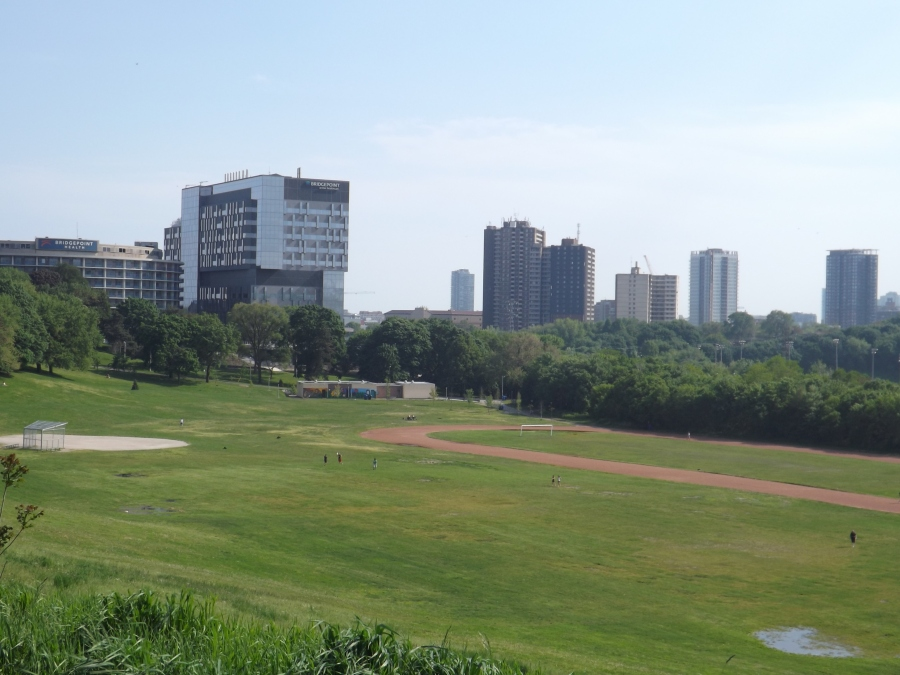 City view from Riverdale Park