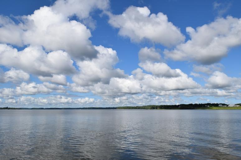 Rice Lake 2