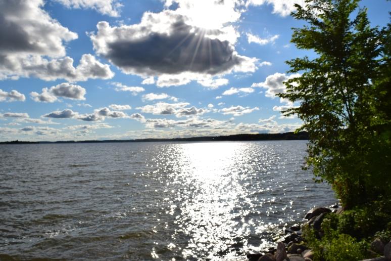 Rice Lake 4